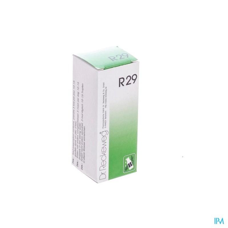 RECKEWEG DR. R29 GUTT 50ML